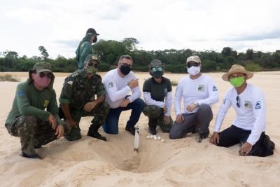 Parceiros do projeto Quelônios do Tocantins visitam local de soltura de filhotes no Cantão